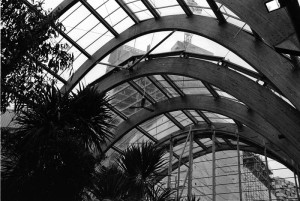 Inside the Winter Gardens