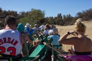 Camel Ride at Masapalomas