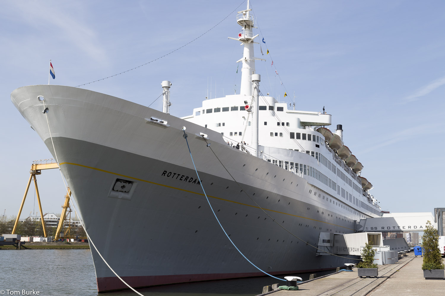 A visit to SS Rotterdam | Tom's Cruise Blog Tom Cruise Ports
