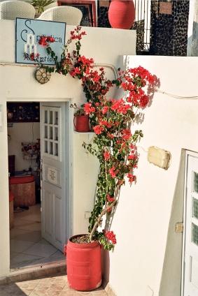 Solstice_Santorini_0188